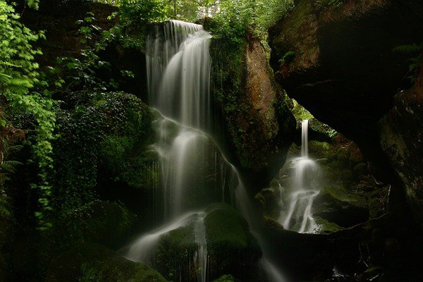 Waterfall in a forest setting