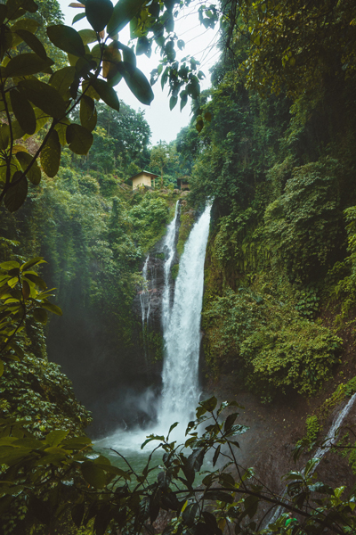 Waterfall in a jungle setting