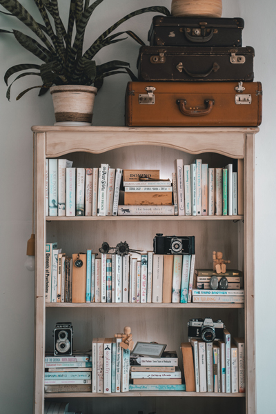 Suitcase and plant on top of bookshelf